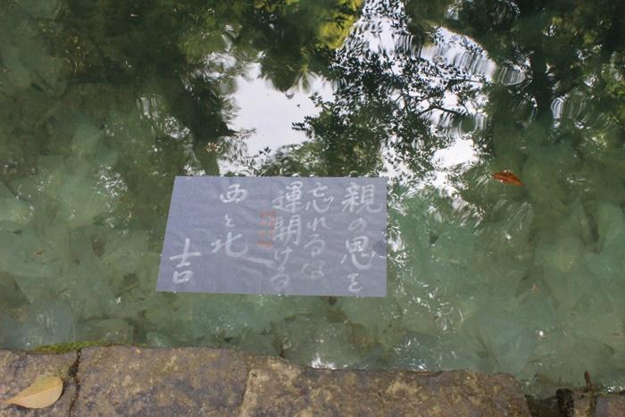出雲の八重垣神社の占いの結果「親の恩を忘れるな運開ける」