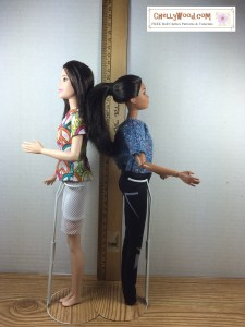 Image of Tall Barbie standing back to back with regular sized Barbie. They stand beside a ruler showing the metric measurements of both Barbies.