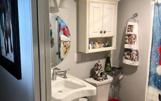 My Dear Watson Handicap Accessible Shower2
