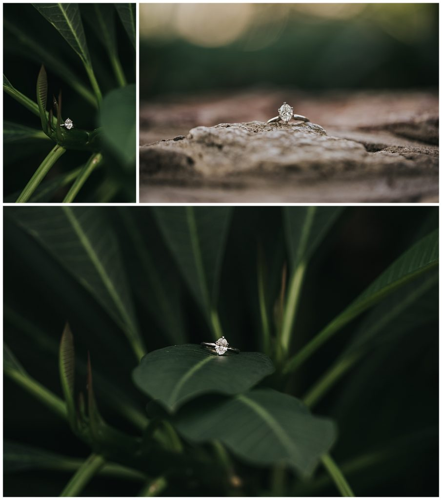 Botanical Gardens Engagement