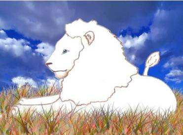 Muscles_the_white_lion_op_640x474