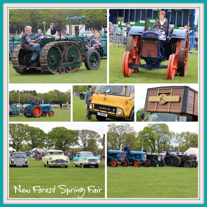 New Forest Spring Fair