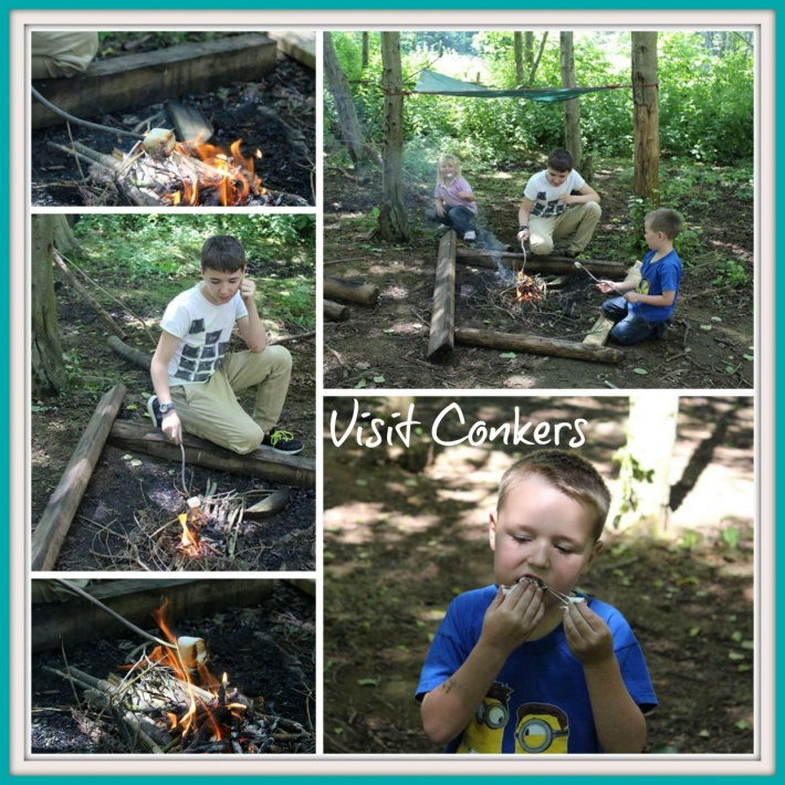 Visit Conkers
