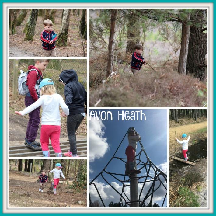 Avon Heath