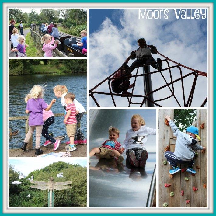 moors-valley