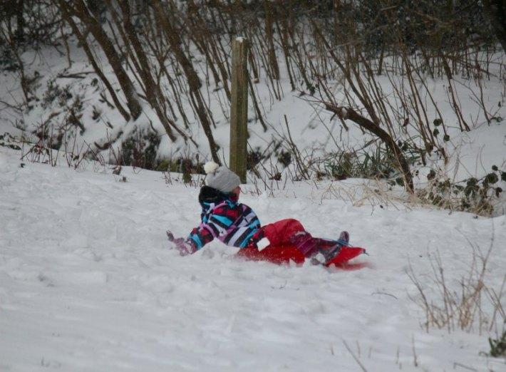 Eliza sledge