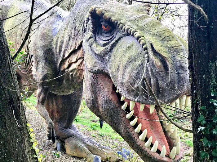 T-Rex at Blackgang Chine