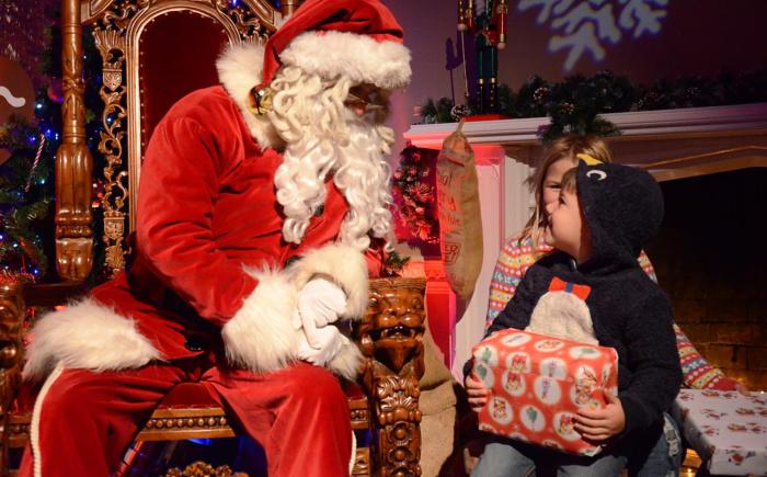 Sebby and Santa