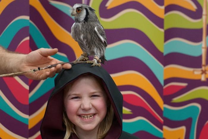 Eliza Scops Owl