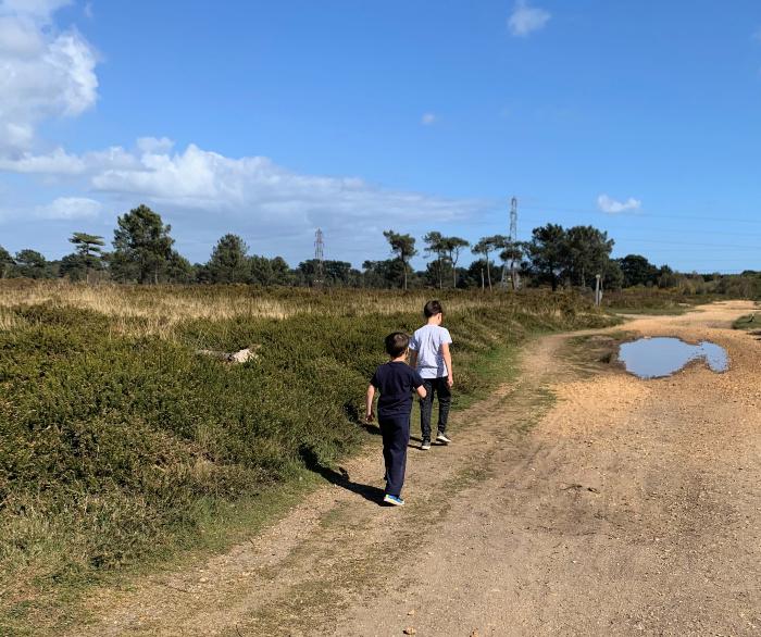Canford Heath Walk