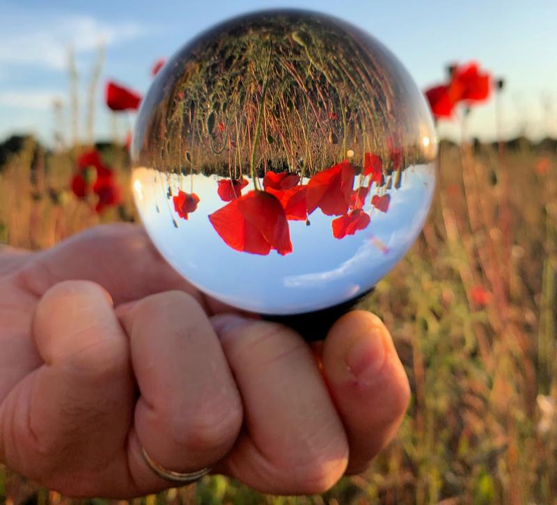 Poppy lensball