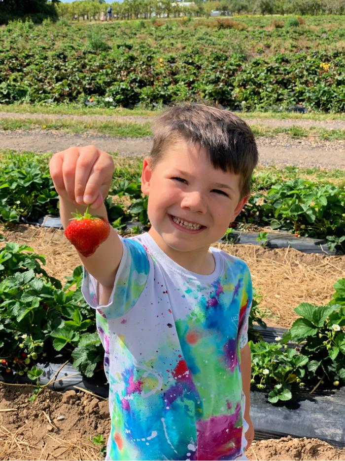 Sebby Strawberry
