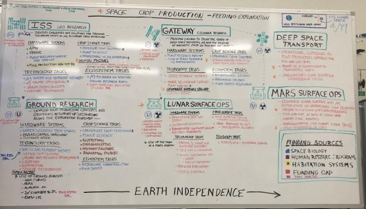 Space Plant Plan
