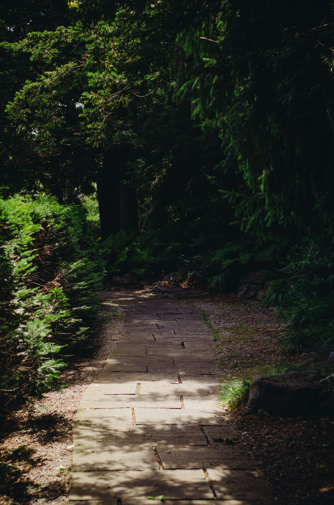 stone path in parkwood gardens