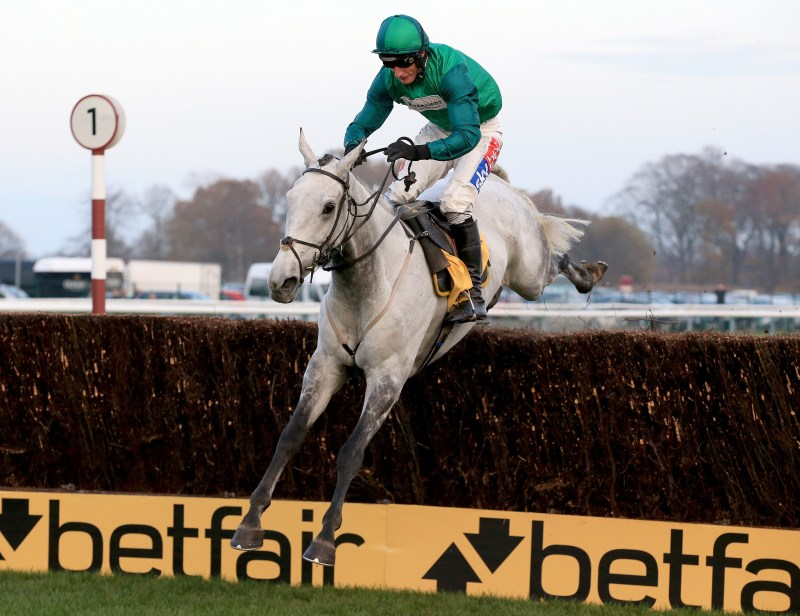Bristol De Mai will be running in the Cheltenham Gold Cup 2020. Check out our betting tips, predictions and odds.