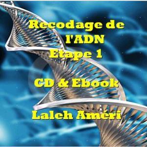Recodage de l'ADN Niveau 1
