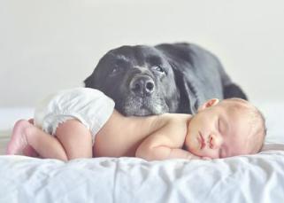 L'influence méconnue de l'environnement sur le sommeil du bébé 11