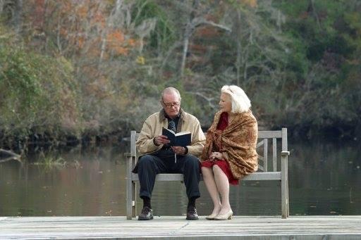 the-notebook-pages-de-notre-amour