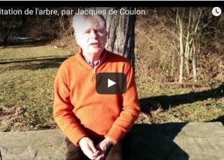 Méditation de l'arbre, par Jacques de Coulon 6