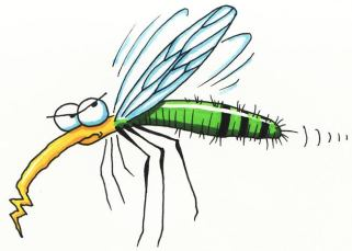 Le karma du moustique 6