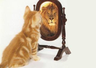 Nous sommes les miroirs les uns des autres 13