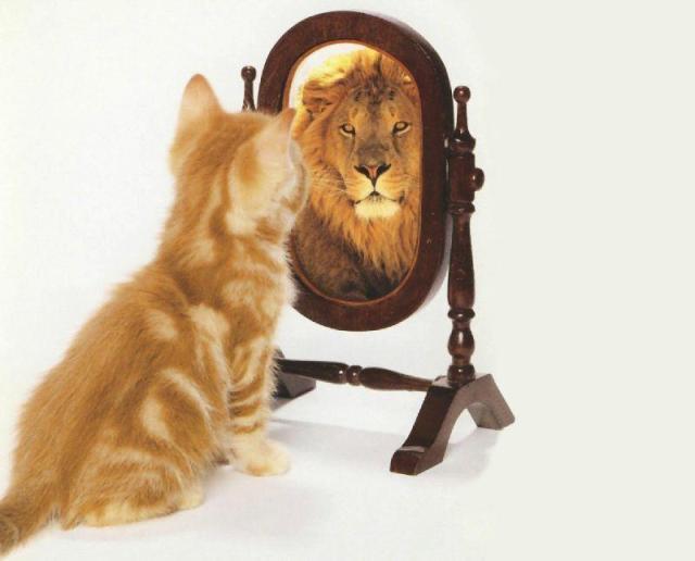 Nous sommes les miroirs les uns des autres 1