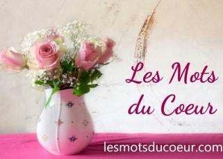 Nouveau blog : Les Mots du Coeur 16