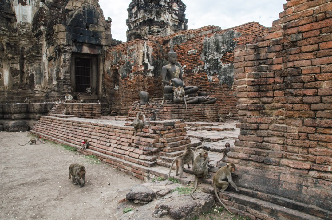 Temple et singes à Lopburi