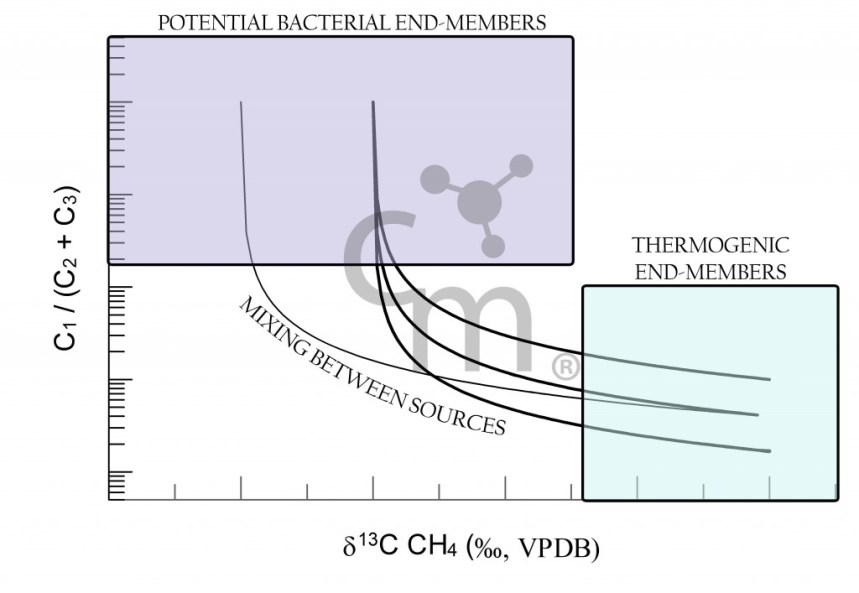 Potential Bacterial End Members