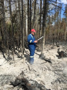 Dr. Court Sandau sampling wildfire debris for analysis of ILRs