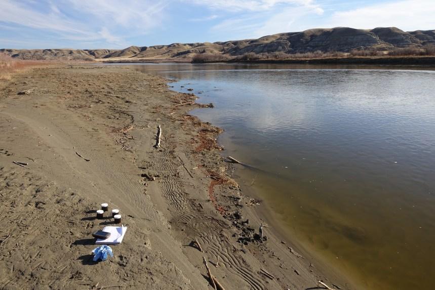 Red Deer River Sample Point