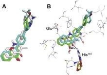 Flavones as isosteres of 4(1H)-quinolones: dual stage antimalarial leads