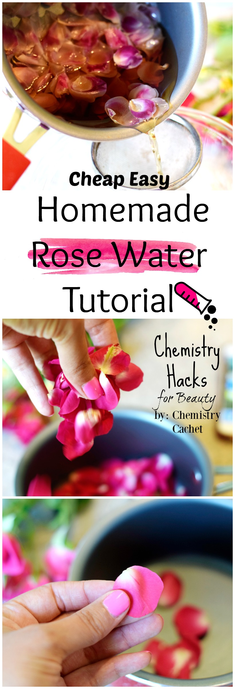 Cheap SUPER Easy Homemade Rose Water Tutorial plus the science on why rose water is fantastic for your skin on chemistrycachet.com