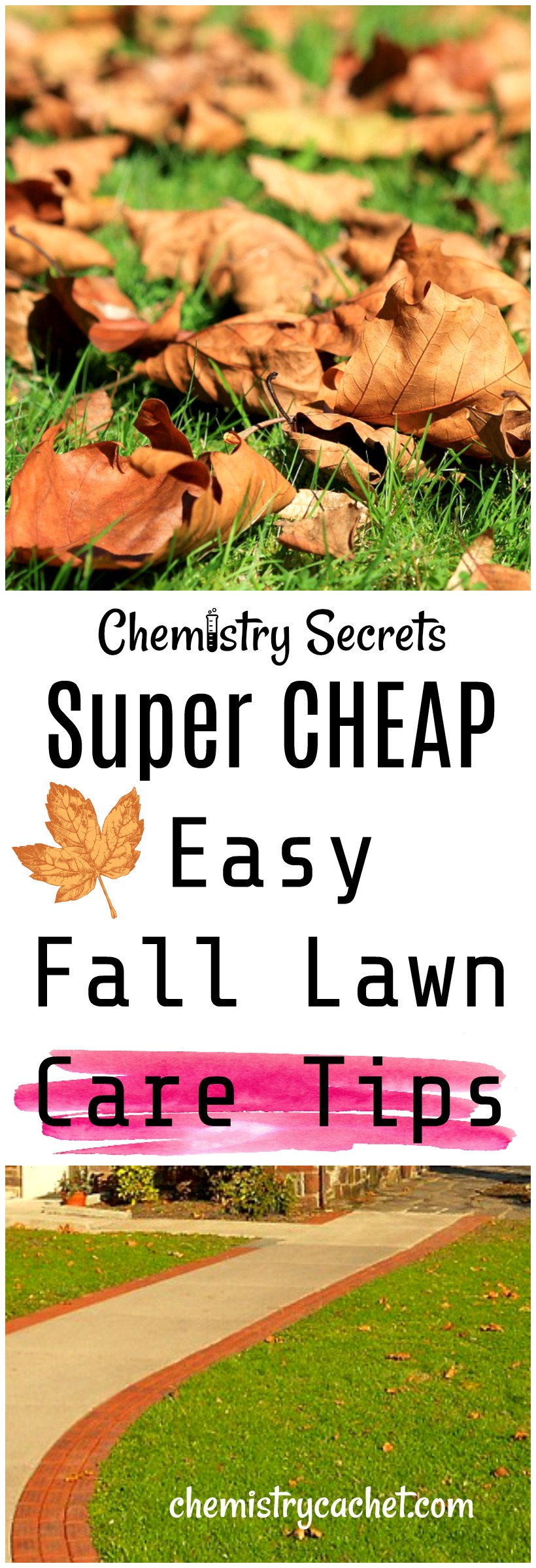 Want to know the secrets to a beautiful spring lawn Follow these easy fall lawn care tips now! So cheap too! on chemistrycachet.com