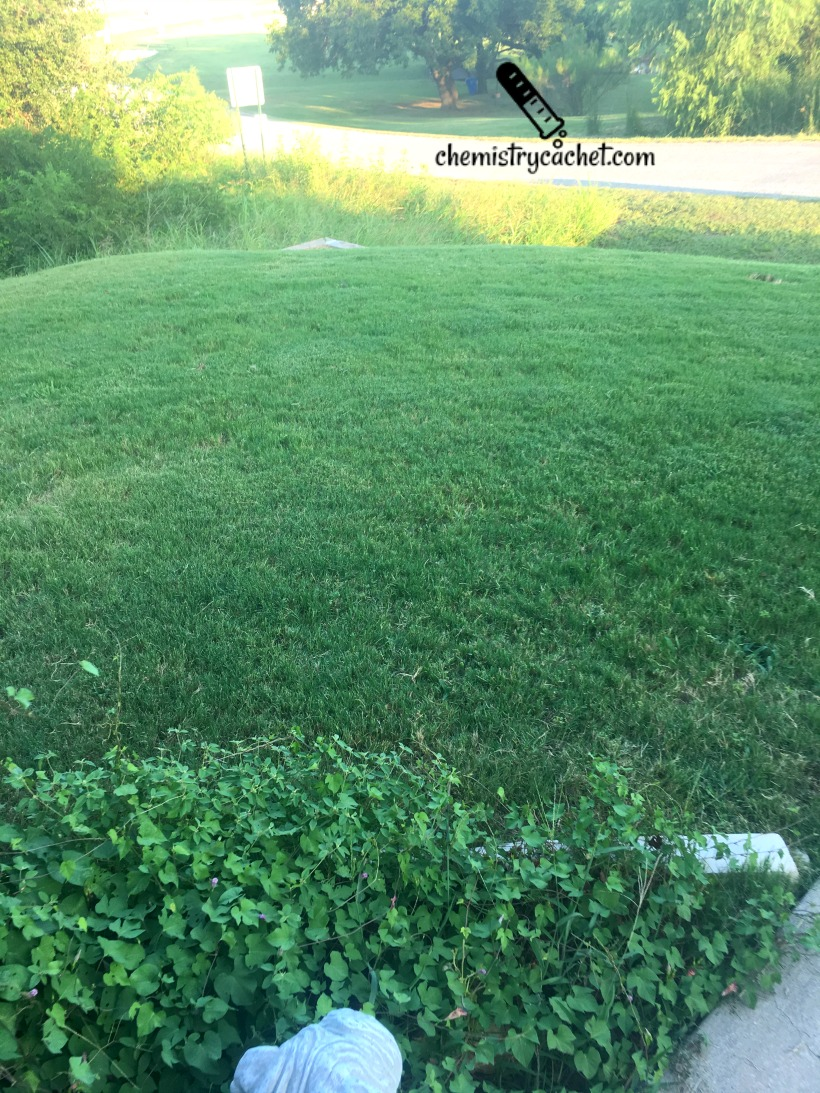 easy fall lawn care tips
