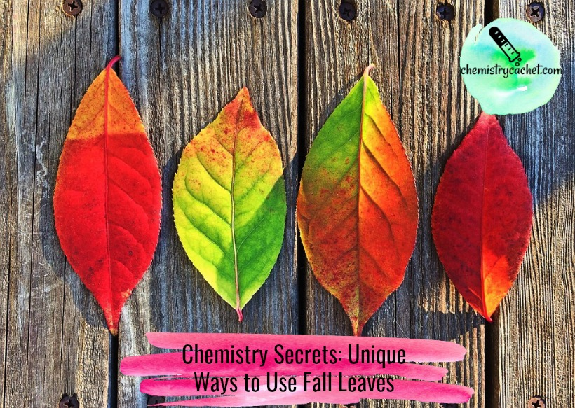 Chemistry Secrets Unique Ways to Use Fall Leaves