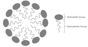 Micelle  ChemistryScore