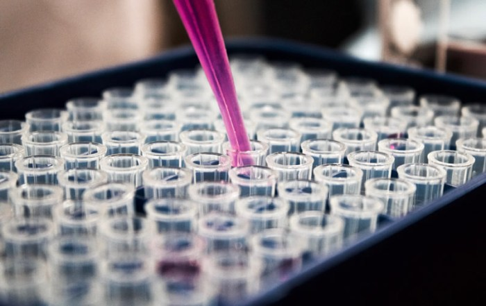 A purple liquid in a pipette being added to vials