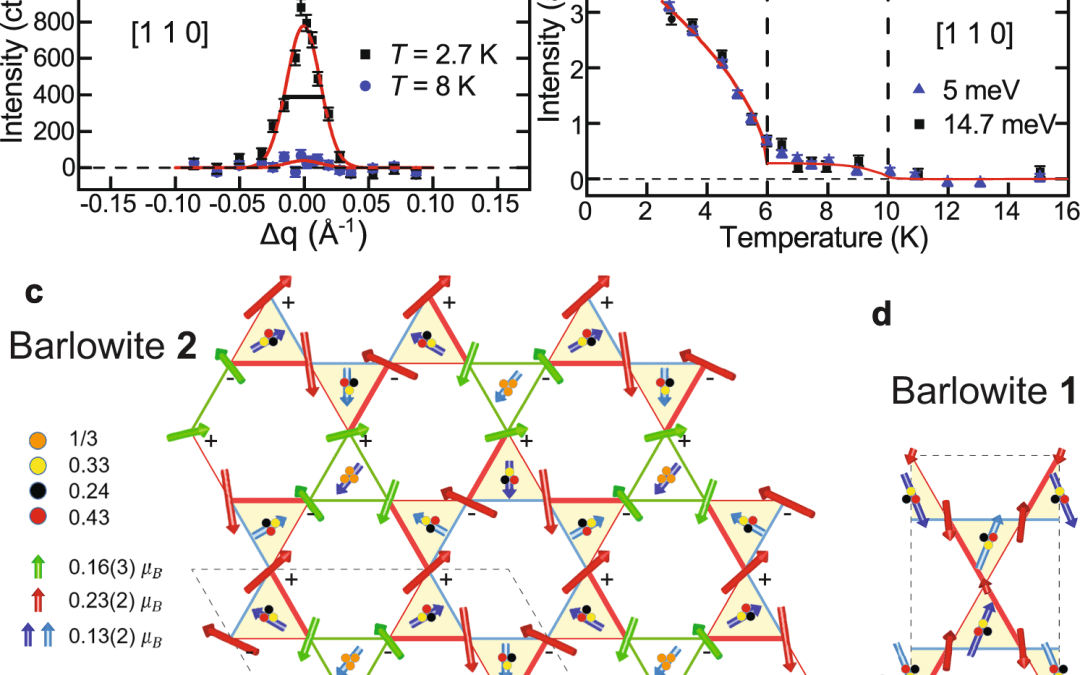 Materializing rival ground states in the barlowite family of kagome magnets: quantum spin liquid, spin ordered, and valence bond crystal states