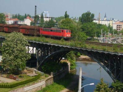 Chemnitztalviadukt_Kohlependel_im_Fruehsommer