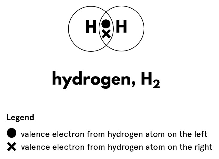 Dot and cross diagram of hydrogen molecule, whereby there is a pair of shared electrons represented by a dot and a cross in the overlapping region of the electron shells