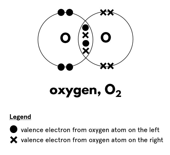 Dot and cross diagram of hydrogen molecule, whereby there are two pairs of shared electrons represented by two dots and two crosses in the overlapping region of the electron shells
