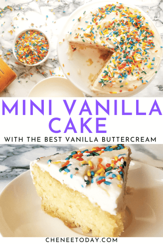 Easy Mini Vanilla Cake Recipe from Scratch - Perfect for Two!   Chenée Today