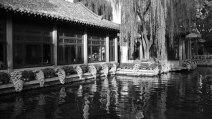 Silk   Ji Nan, Shandong Province, China © 2013 Cheng Zhang