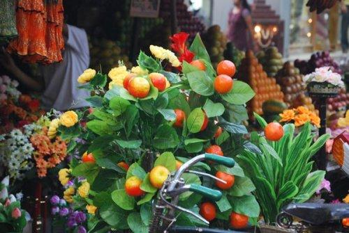 oranges in a pot