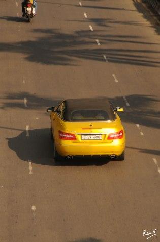 NRM_5964