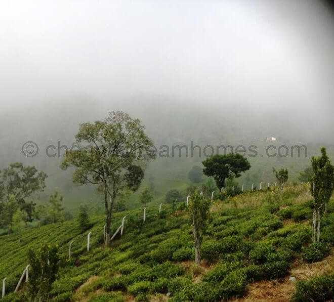plot for sale in coonoor