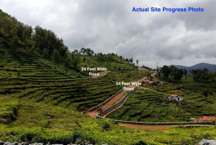 Actual Site Image