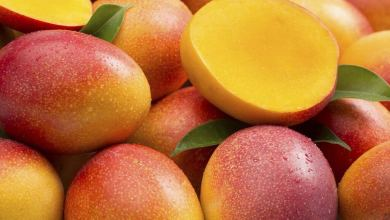 Photo of Fact Check: Can We Eat Mango During The Summer Season?
