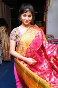 Lady-SilK India-Valluvarkotam Hall-Till-11-7-15